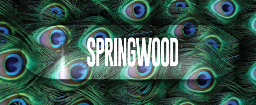 Springwood Plumage Skateboard Deck 8.1